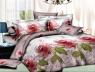 Ткань для постельного белья Ранфорс R549 (60м)