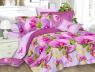Ткань для постельного белья Ранфорс R579 (60м)