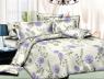 Ткань для постельного белья Ранфорс R-Y5D2043 (60м)