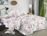 Ткань для постельного белья Полиэстер 75 PL17681 (60м)