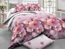 Ткань для постельного белья Ранфорс R377 (50м)