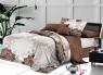 Ткань для постельного белья Ранфорс R21113 (A+B) - (50м+50м)