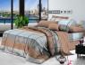 Тканина для постільної білизни Ранфорс R110925 (60м)