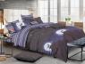 Двуспальный набор постельного белья 180*220 из Сатина №490AB Черешенка™