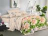 Ткань для постельного белья Полиэстер 75 PL727 (60м)