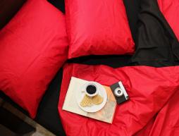 """Полуторный набор однотонного постельного белья 150*220 из Бязи """"Gold"""" №1540631AB Черешенка™"""