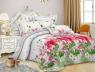 Ткань для постельного белья Полиэстер 75 PL299511 (60м)