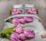 Ткань для постельного белья Ранфорс R2456 (50м)