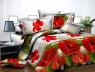 Ткань для постельного белья Ранфорс R2297 (50м)