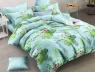Семейный набор хлопкового постельного белья из Ранфорса №183169 Черешенка™