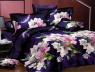 Семейный набор хлопкового постельного белья из Ранфорса №181948 Черешенка™