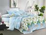 Ткань для постельного белья Полиэстер 75 PL3104 (60м)