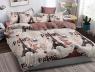 Полуторный набор постельного белья 150*220 из Сатина №1077AB Черешенка™