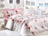 Евро макси набор постельного белья 200*220 из Ранфорса Leora Pembe First Choice™
