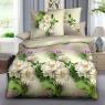 Ткань для постельного белья Ранфорс R-53-4A (60м)