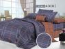 Двоспальний набір постільної білизни 180*220 із Сатину №522AB Черешенька™