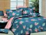 Ткань для постельного белья Ранфорс R-HL1568 (A+B) - (60м+60м)