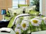 Ткань для постельного белья Ранфорс R509 (60м)
