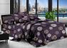 Ткань для постельного белья Полиэстер 75 PL6092 (80м)