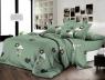 Ткань для постельного белья Ранфорс R-Y5D2122A (60м)
